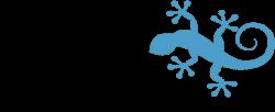 LACERTA – Services Informatiques